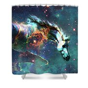 Free Of The Carousel II Shower Curtain