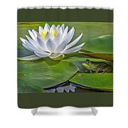 Frog And Lily Shower Curtain