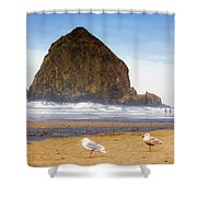 From A Gull's Perspective Haystack Rock Shower Curtain
