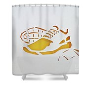 Game Time Shower Curtain by Phyllis Howard