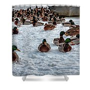 Gathering #i3 Shower Curtain by Leif Sohlman