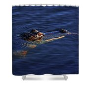 Gator And Snake Shower Curtain by Tom Claud