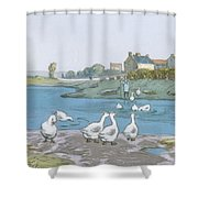 Geese By The River Loing 04 Shower Curtain