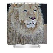 Gentle Paws Shower Curtain by Tracey Goodwin