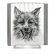 German Shepherd Smile Shower Curtain by MM Anderson