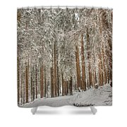 Gerschnialp Shower Curtain
