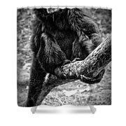 Gibbon Shower Curtain