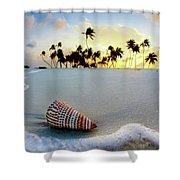 Gili Shell Shower Curtain