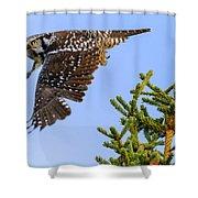 Glance Shower Curtain