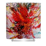 Glory Explosion Shower Curtain