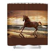 Gold Runner Shower Curtain by Melinda Hughes-Berland