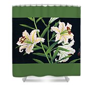 Golden-banded Lily - Digital Remastered Edition Shower Curtain