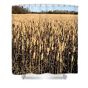 Harvest Time Shower Curtain