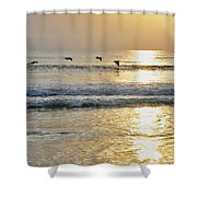 Golden Daybreak Shower Curtain