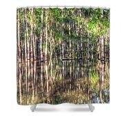 Golden Hour Serenity Shower Curtain