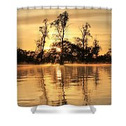 Golden Start Shower Curtain