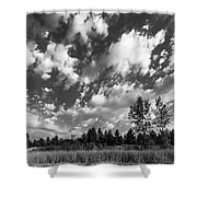 Good Harbor Shoreline Black And White Shower Curtain
