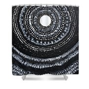 Gothic Waves Original Painting Shower Curtain