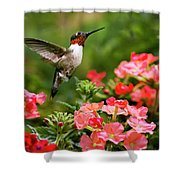 Graceful Garden Jewel Shower Curtain
