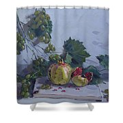 Grapes And Pomegranates Shower Curtain