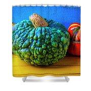 Graphic Autumn Pumpkins And Gourds Shower Curtain