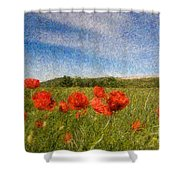 Grassland And Red Poppy Flowers 3 Shower Curtain