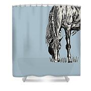 Grazing Shower Curtain