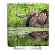 Great Blue Heron And Boulder Shower Curtain