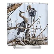 Great Blue Heron Rookery 4 Shower Curtain