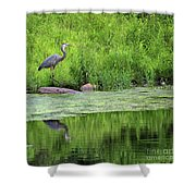 Great Blue Heron Square Shower Curtain
