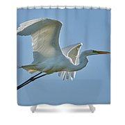 Great Egret, Yolo County California Shower Curtain