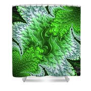 Green Frosty Canyon Shower Curtain