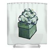 Green Present Shower Curtain