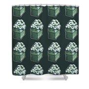 Green Present Pattern Shower Curtain