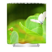 Green Wilderness Shower Curtain