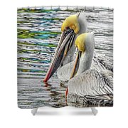 Greeting Party Shower Curtain