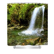 Grotto Falls On Trillium Gap Trail In Smoky Mountains National Park Shower Curtain
