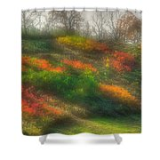 Ground Bouquet No. 3 - Somewhere In Greene County, Pennsylvania - Autumn Shower Curtain