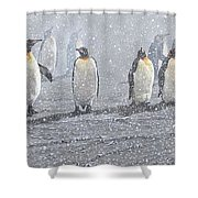 Group Of King Penguins In The Snow Shower Curtain by Alan M Hunt