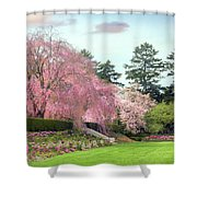 Weeping Cherry And Tulips Shower Curtain