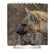 H1 Shower Curtain by Joshua Able's Wildlife