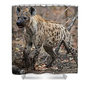H2 Shower Curtain by Joshua Able's Wildlife