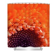 Happy Colors Shower Curtain