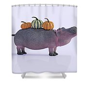 Pumpotomas Shower Curtain