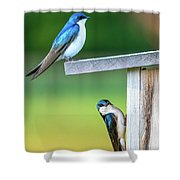 Happy Home Shower Curtain