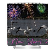 Happy New Year 2019 - Four Pelicans Shower Curtain