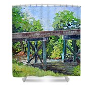 Harrison Park Bridge-ellijay River - Sun Peeking Under Shower Curtain