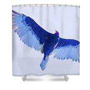 Hauteur  Shower Curtain