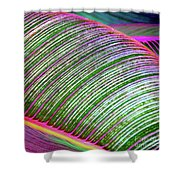 Hawaii Plants And Leaves Shower Curtain