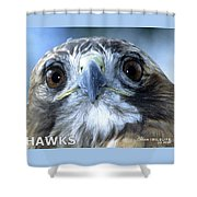 Hawks Mascot Shower Curtain